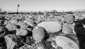 Konststrandsikten över en sten parkerar vid havet royaltyfri fotografi