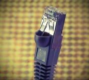 Kontaktdon för nätverk RJ45 som förbinder datorer till internet Arkivfoton