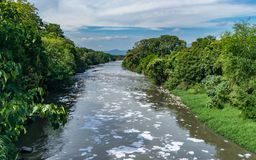 Kontaminerad Bogota flod fotografering för bildbyråer