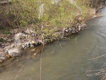 Kontaminerad vatten-förorening Fotografering för Bildbyråer