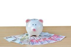 kontant gullig piggy bunt för grupp Begrepp av besparingar och pengar Royaltyfri Foto