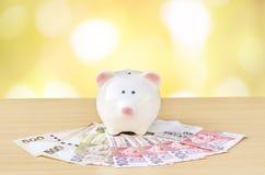 kontant gullig piggy bunt för grupp Begrepp av besparingar och pengar Royaltyfria Foton