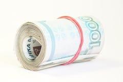 kontant pengarryss för årsdag Royaltyfri Bild