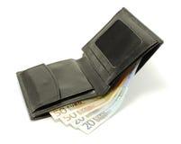 kontant plånbok Royaltyfri Foto
