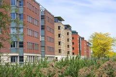Kontorsbyggnader i Rotterdam Royaltyfria Foton