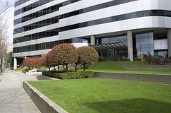 Kontorsbyggnadframdelträdgård royaltyfria bilder