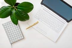 Kontorsskrivbord med en vit bärbar dator, en fikus i en kruka Inrikesdepartementetbegrepp ovanf?r sikt royaltyfri foto