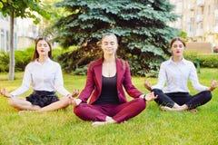 Kontorsyoga Tre unga flickor i en lotusblomma poserar sitter på gr Royaltyfri Bild