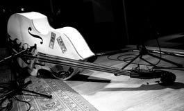 kontrabas basowa kopia Obrazy Royalty Free