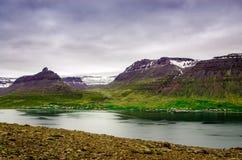 Kontrast av naturen med is och gräs Royaltyfri Foto