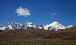 Kontrast i den östliga Sierra Nevada Arkivfoto