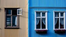 Kontraste der Farbe Lizenzfreie Stockfotos