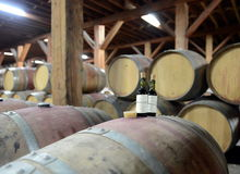 Kontrola jakości wino przy wytwórnią win Santa Rita Obraz Stock