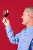 kontrollera glass manrött vin för klarhet arkivfoton