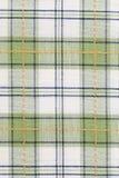 kontrollerad handduk för maträttgreenmodell Royaltyfri Foto