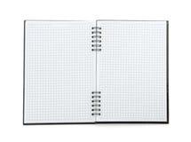 Kontrollerat papper för anmärkningsbok Arkivfoto