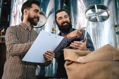 Kontrollkvalitet för två män av malten Arbetare av analys för bryggeriuppförandeprodukt royaltyfri fotografi