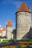 Kontrolltürme von altem Tallinn Stockbilder