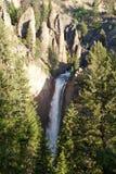 Kontrollturm fällt Wasserfall in Yellowstone lizenzfreie stockfotografie
