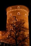Kontrollturm in Wawel - Krakau Lizenzfreie Stockfotografie