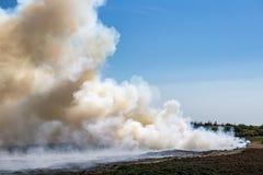 Kontrolowany palenie stary i suchy wrzos przy Morsum falezą, Niemcy zdjęcie royalty free