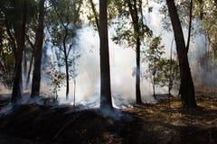 Kontrolowany Pożarniczy oparzenie zdjęcia stock