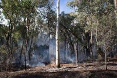 Kontrolowany Pożarniczy oparzenie zdjęcie royalty free