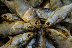 Kontuar z soloną i wysuszoną ryba jako tło Zdjęcia Royalty Free