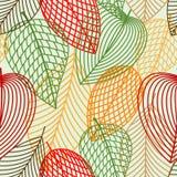 Konturów jesiennych liści bezszwowy wzór Zdjęcie Stock