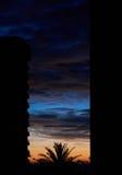 Kontur av byggnader och palmträdet för en highrise Royaltyfria Bilder