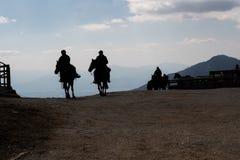 Kontur av cowboyer som rider en häst i aftonen arkivfoto