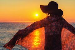 Kontur av den bekymmerslösa kvinnan på stranden arkivfoto