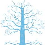 Kontur av det djupfrysta trädet Arkivfoton