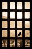 Kontur av en fågel som sitter på ett patternlike fönster i Indien arkivfoton