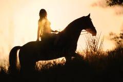 Kontur av en flicka som rider en häst på solnedgången Arkivbild