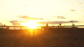 Kontur av en flicka som rider en häst på solnedgången lager videofilmer