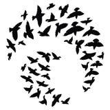 Kontur av en flock av fåglar Svartkonturer av flygfåglar Flygduvor Tatuering royaltyfri illustrationer
