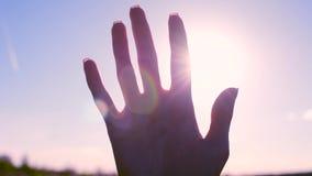 Kontur av en hand i solen arkivfilmer