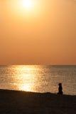 Kontur av en hund på stranden Royaltyfri Fotografi