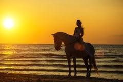 Kontur av en kvinna som rider en häst på stranden på solnedgången royaltyfri fotografi