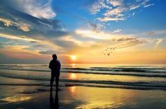 Kontur av en man som ser till fåglarna som flyger när sol som stiger upp Arkivbild