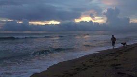 Kontur av en ung man med körningar för en hund längs stranden av ett tropiskt hav på solnedgången arkivfilmer