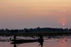 Kontur av ett fartyg i behållaren Och solnedgång royaltyfria foton
