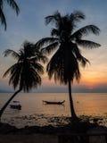Kontur av ett fartyg och palmträd mot inställningssolen med moln arkivfoto