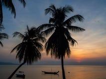 Kontur av ett fartyg och palmträd mot inställningssolen med moln fotografering för bildbyråer