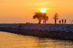 Kontur av folk och små träd på en stenig pir under solar Royaltyfri Fotografi
