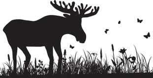 Kontur av gräs och hjortar Royaltyfri Fotografi
