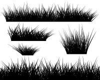 Kontur av gräs på vit bakgrund Fotografering för Bildbyråer