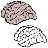 Kontur av hjärnan vektor illustrationer