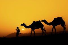 Kontur av kamelaffärsmannen över sanddyn Royaltyfri Bild